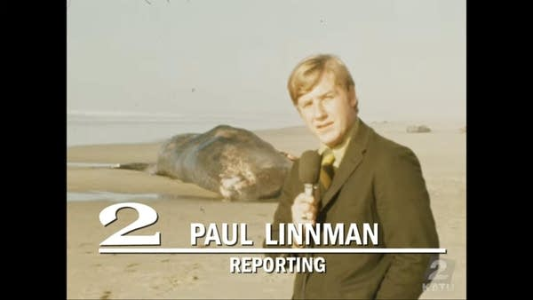 1970 local TV news report showing reporter in front of beached whale