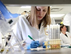 A student sets up test tubes in the UMN lab.