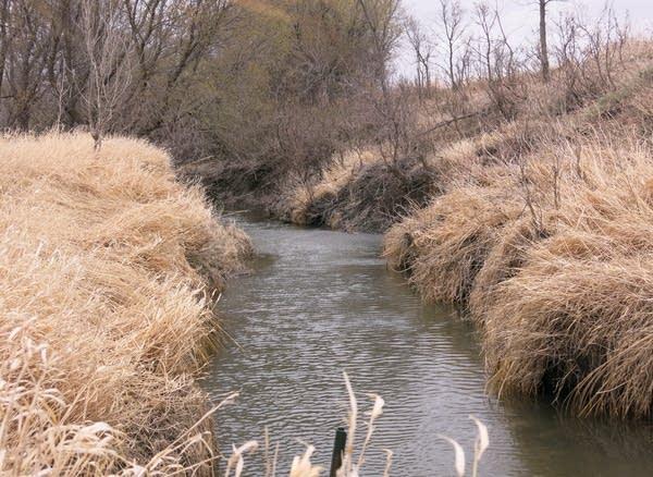 Drainage ditch provides irrigation