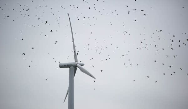 Here, a turbine is seen in northern Germany.