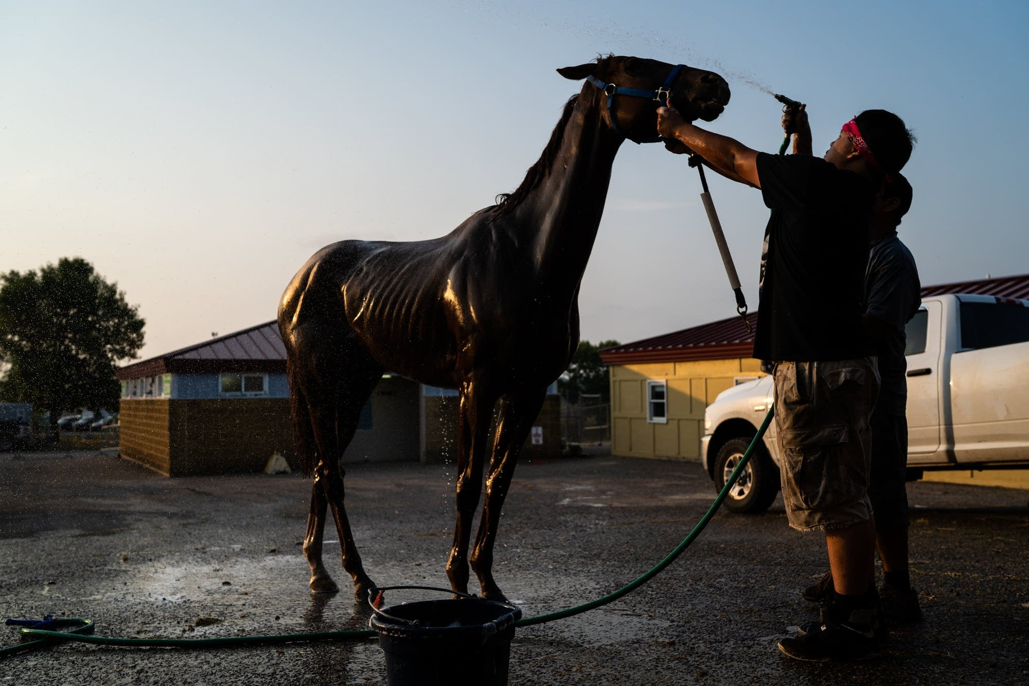 Members of the Little Badger team wash one of their horses.