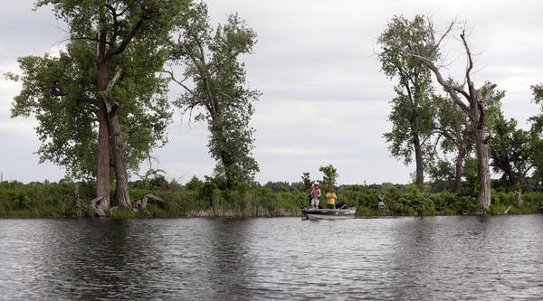 A team from Hawley, Minn., fishes close to shore in the early evening.