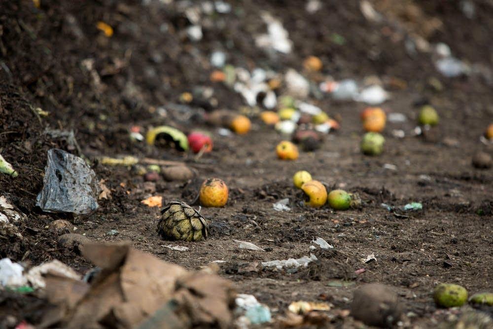 Organics compost