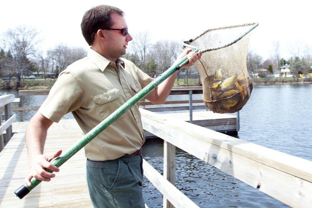 Depositing fish