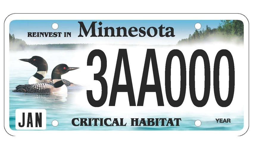 Loons plate