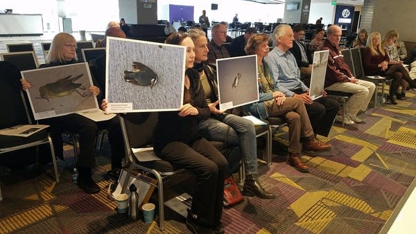 Bird advocates hold up poster-sized photos of dead birds.