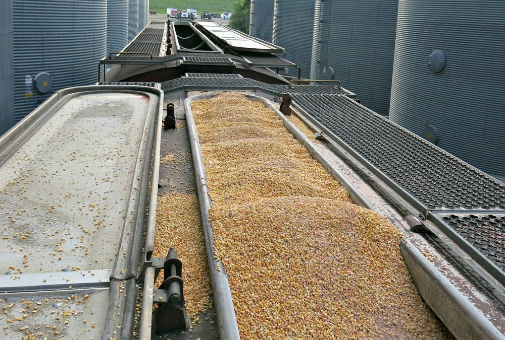 A rail car loaded with corn