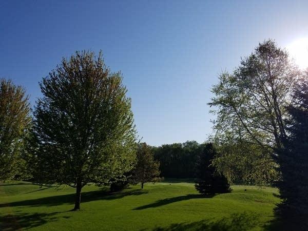 5 15 Spring sky