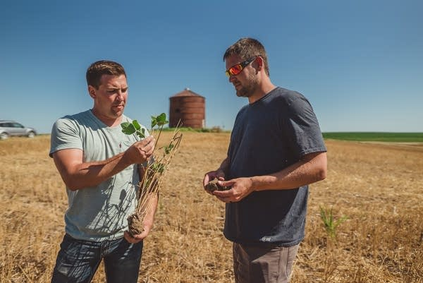 Mitchell and Zach chat about cover crops and soil health.
