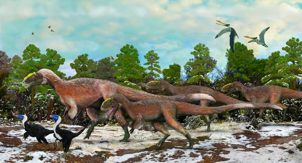 Yutyrannus huali, feathered dinosaur