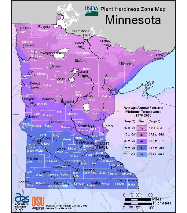 MN plant hardiness zone map