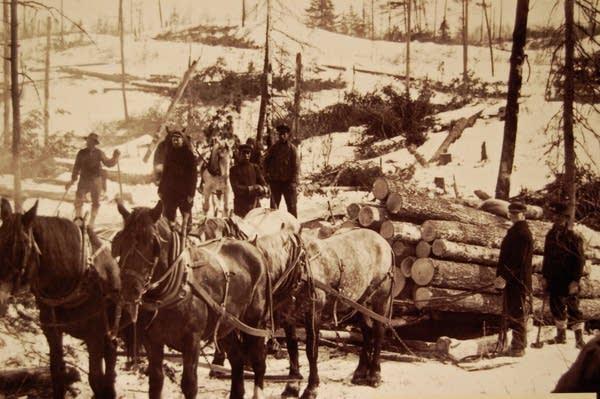 Old logging camp