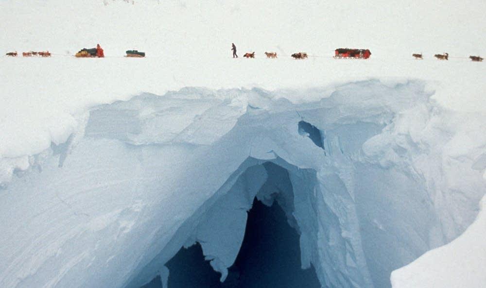 Weyerhauser Glacier