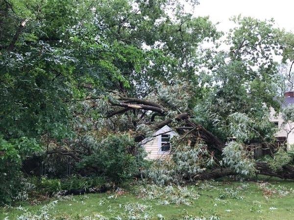 Storm damage in Bemidji on Wednesday