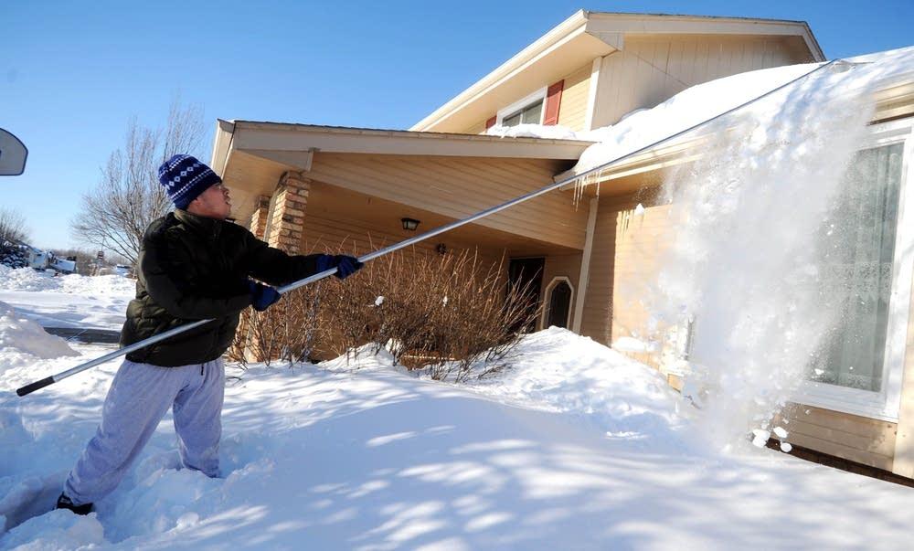 Snow rake