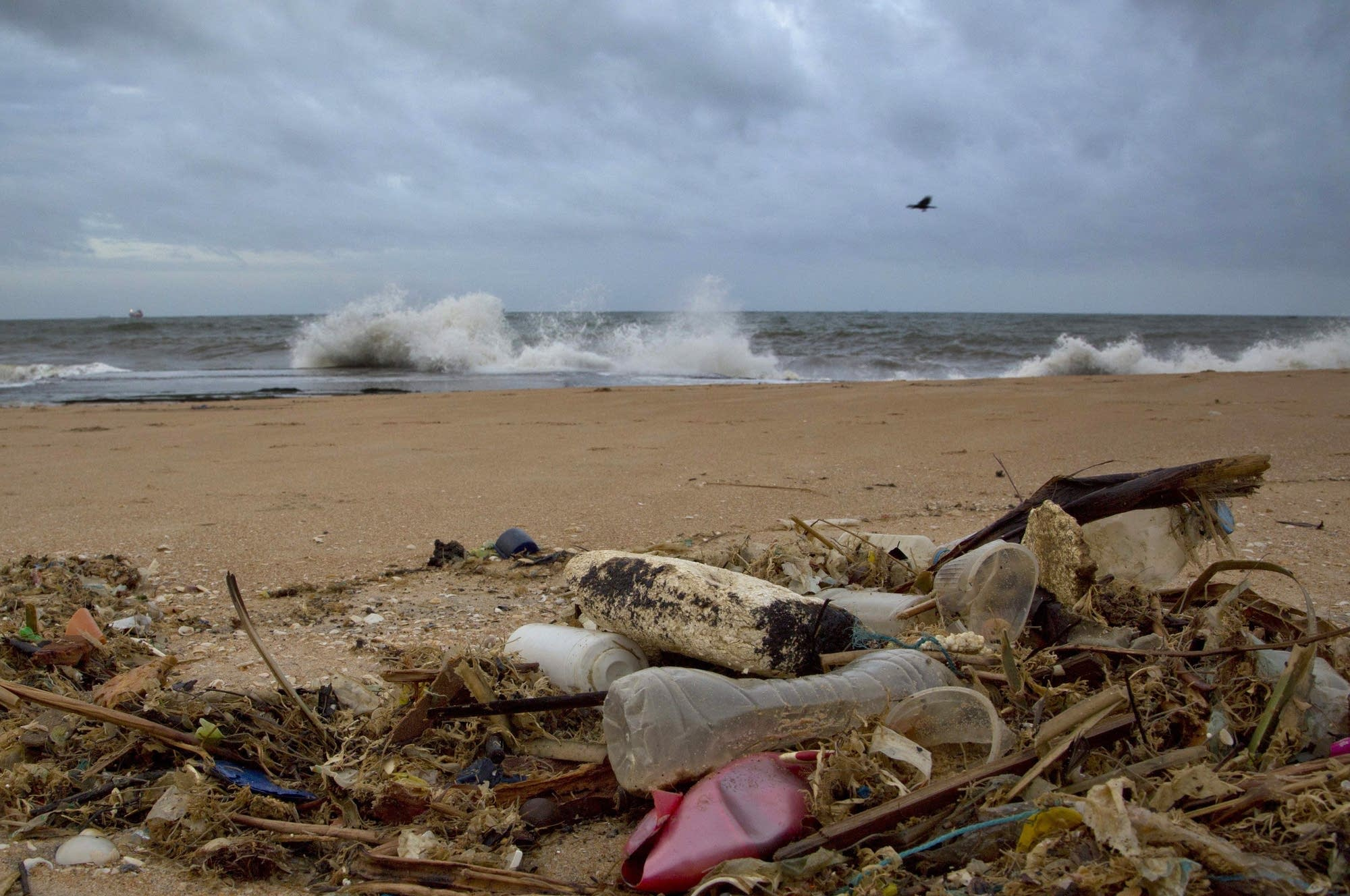 A plastic bottle lies among other debris washed ashore on the beach.