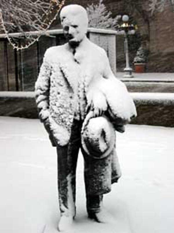 Snowy Fitzgerald