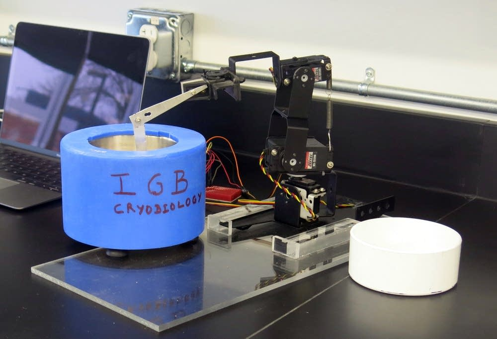 Robots handle the precise preservation process.