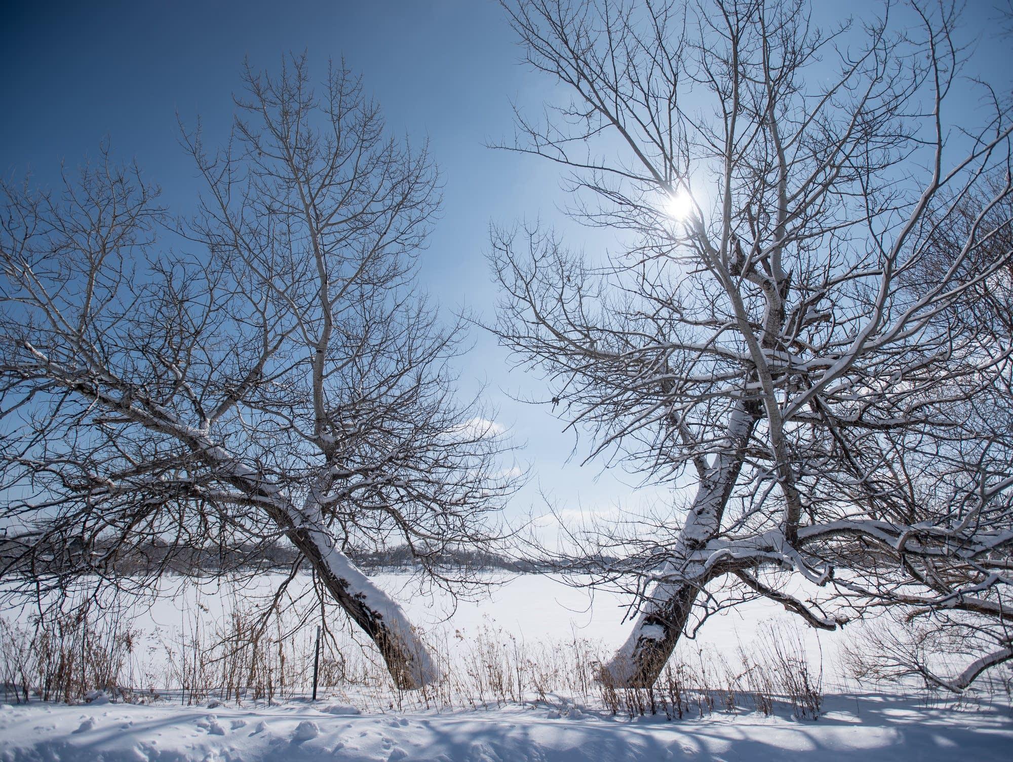 A winter scene at Como Lake in St. Paul