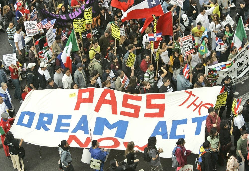 the dream act is it a They wanted a clean dream act — known formally as the development, relief,  and education for alien minors act the bill's aim is to give.