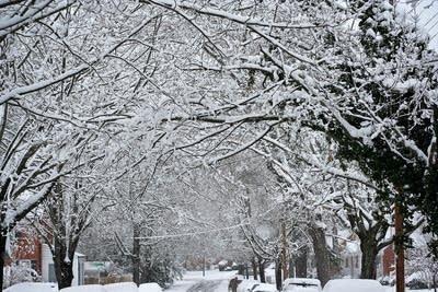 183419 20121210 snowy street