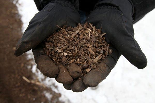 Final compost