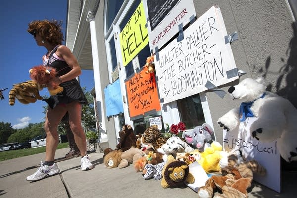 Protesters put up signs and left stuffed animals.
