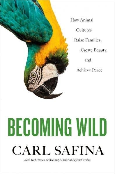 """""""Becoming Wild"""" by Carl Safina"""
