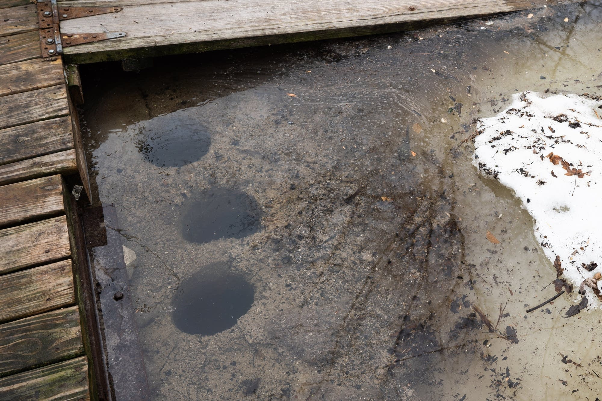 Holes made by an ice auger surround Richie Swanson's houseboat.