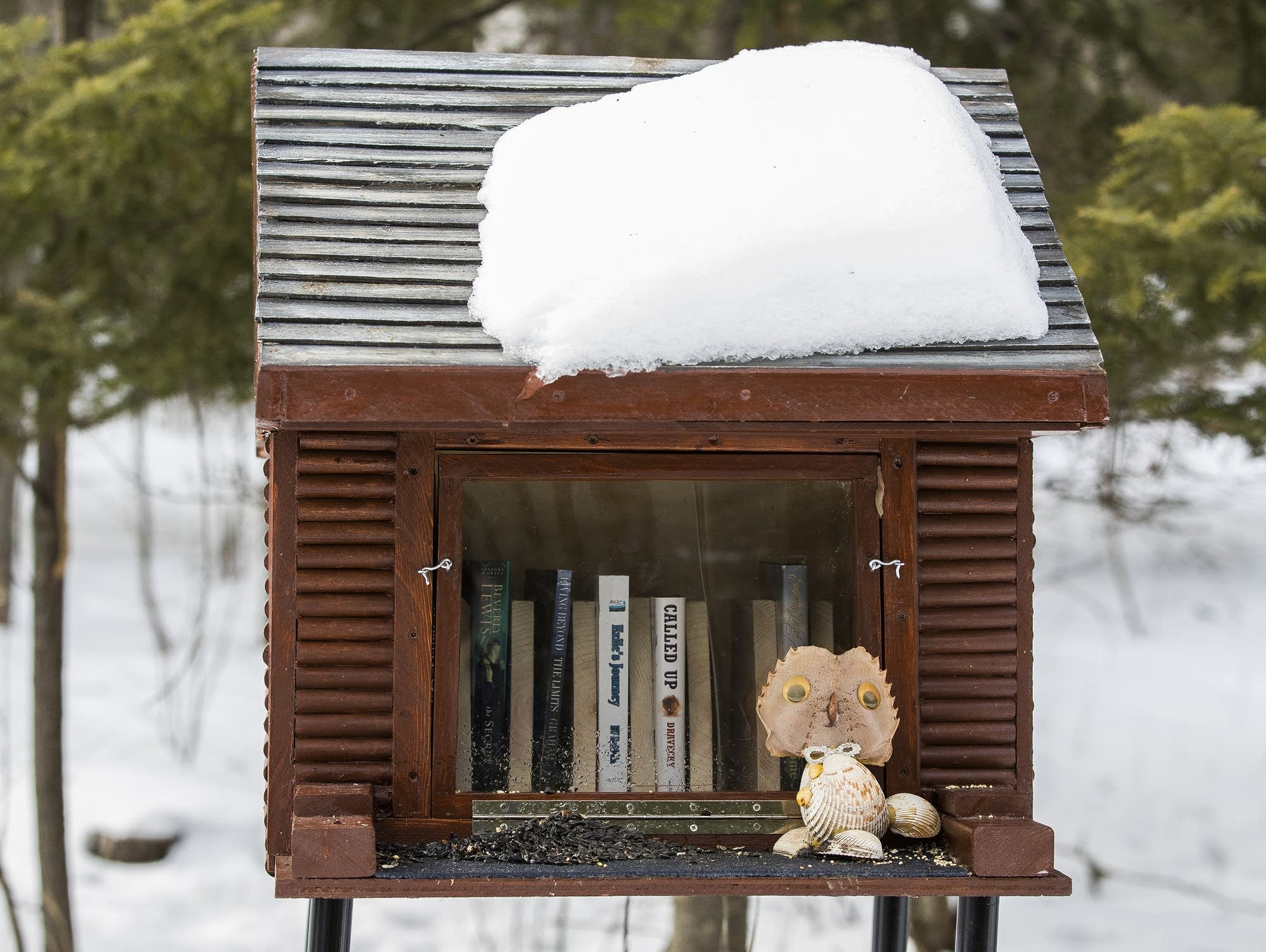 A Little Free Library-themed feeder at Loretta's
