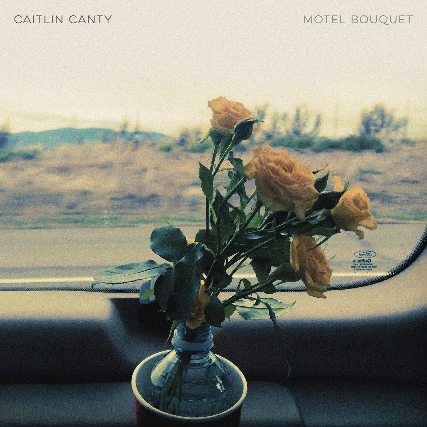 Caitlin Canty, 'Motel Bouquet'