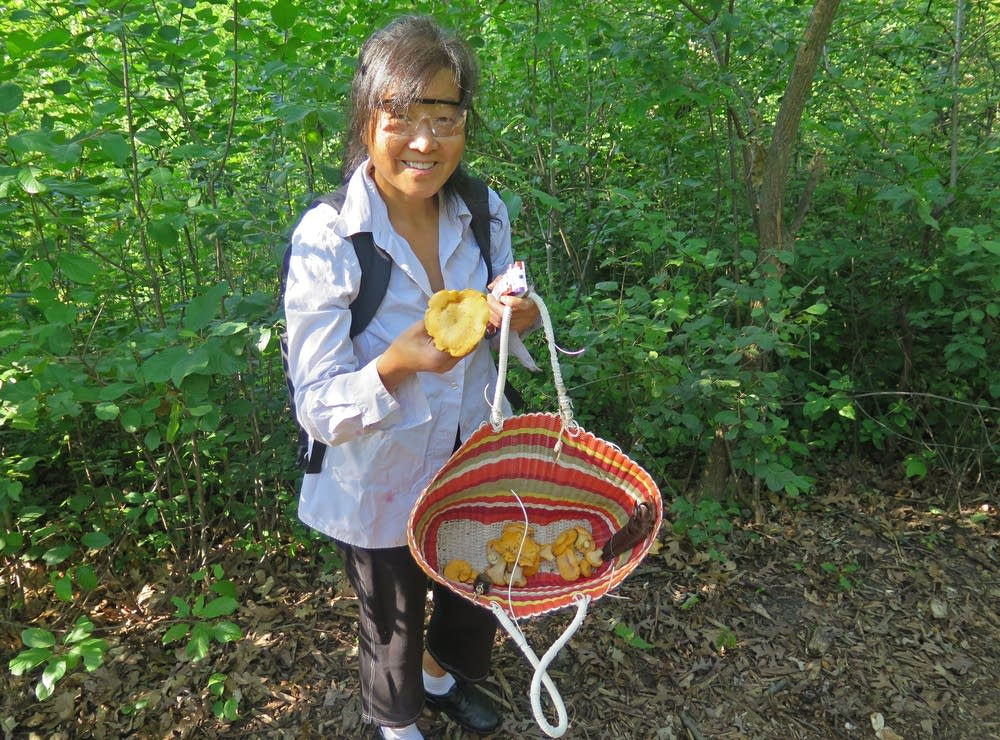 Maggie Kwong Taylor on a mushroom foraging walk.