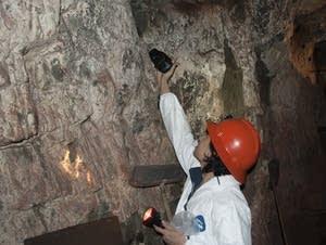 Christine Salomon photographs bats on a wall in the Soudan Mine.