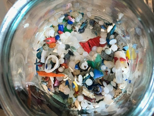 Microplastics found along Lake Ontario by Rochman's team