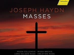 'Haydn: Masses'