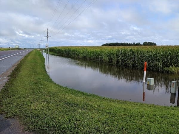 Flooded fields near Hector, Minnesota Thursday September 12, 2019