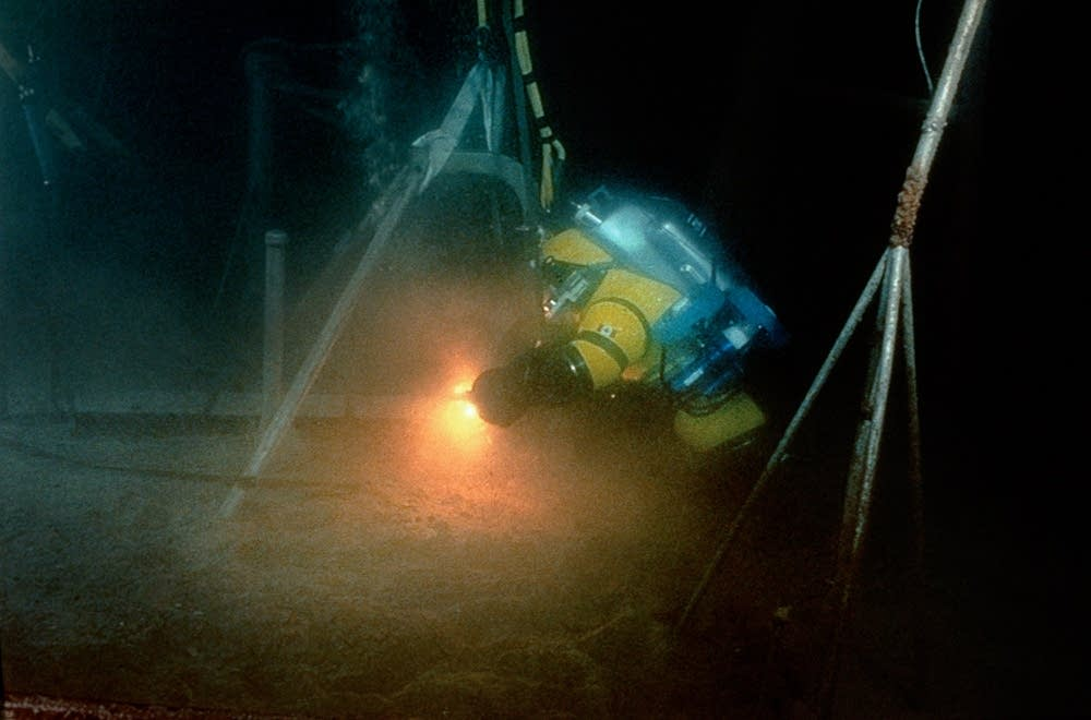 Diver Bruce Fuoco
