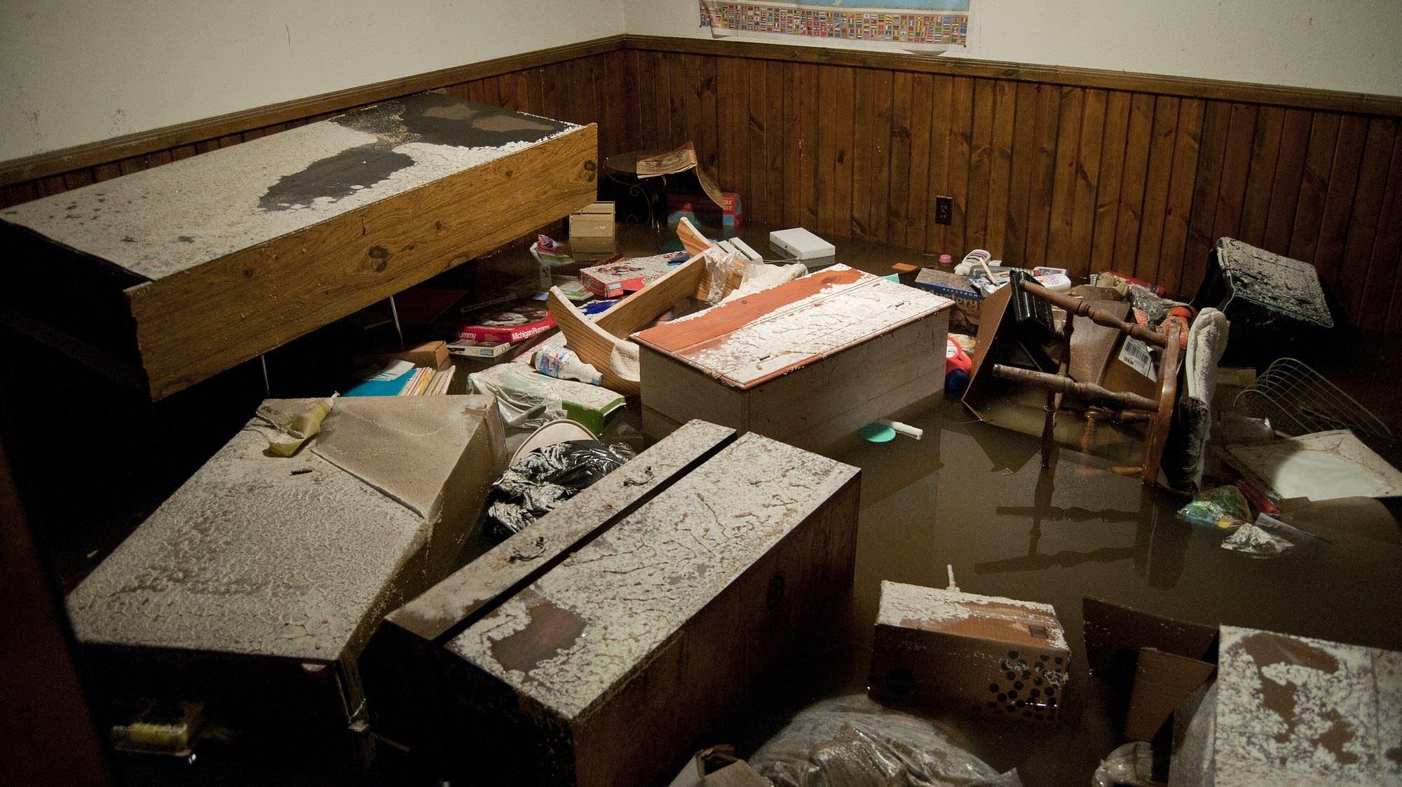 Items float in Sheryl Gutfleisch's basement.