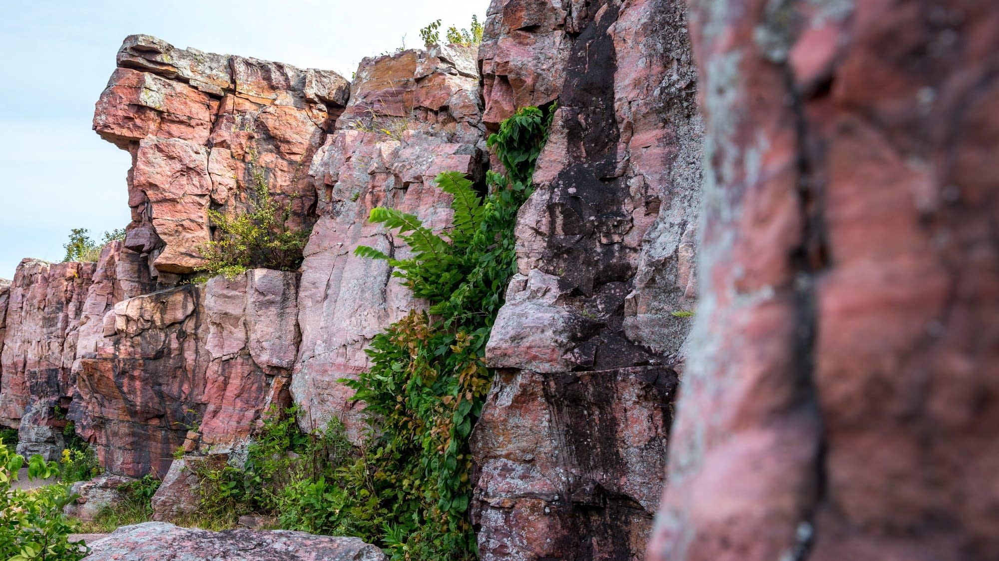 Quartzite cliffs in Pipestone National Monument