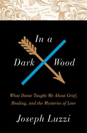'In a Dark Wood' by Joseph Luzzi