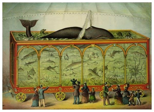 """""""Aquarium with Whale, etc."""", unknown author, 1873."""