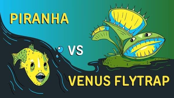 Piranhas vs Venus Flytraps