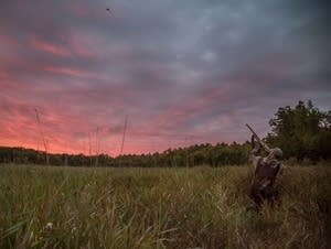 Minnesota duck hunting season opens