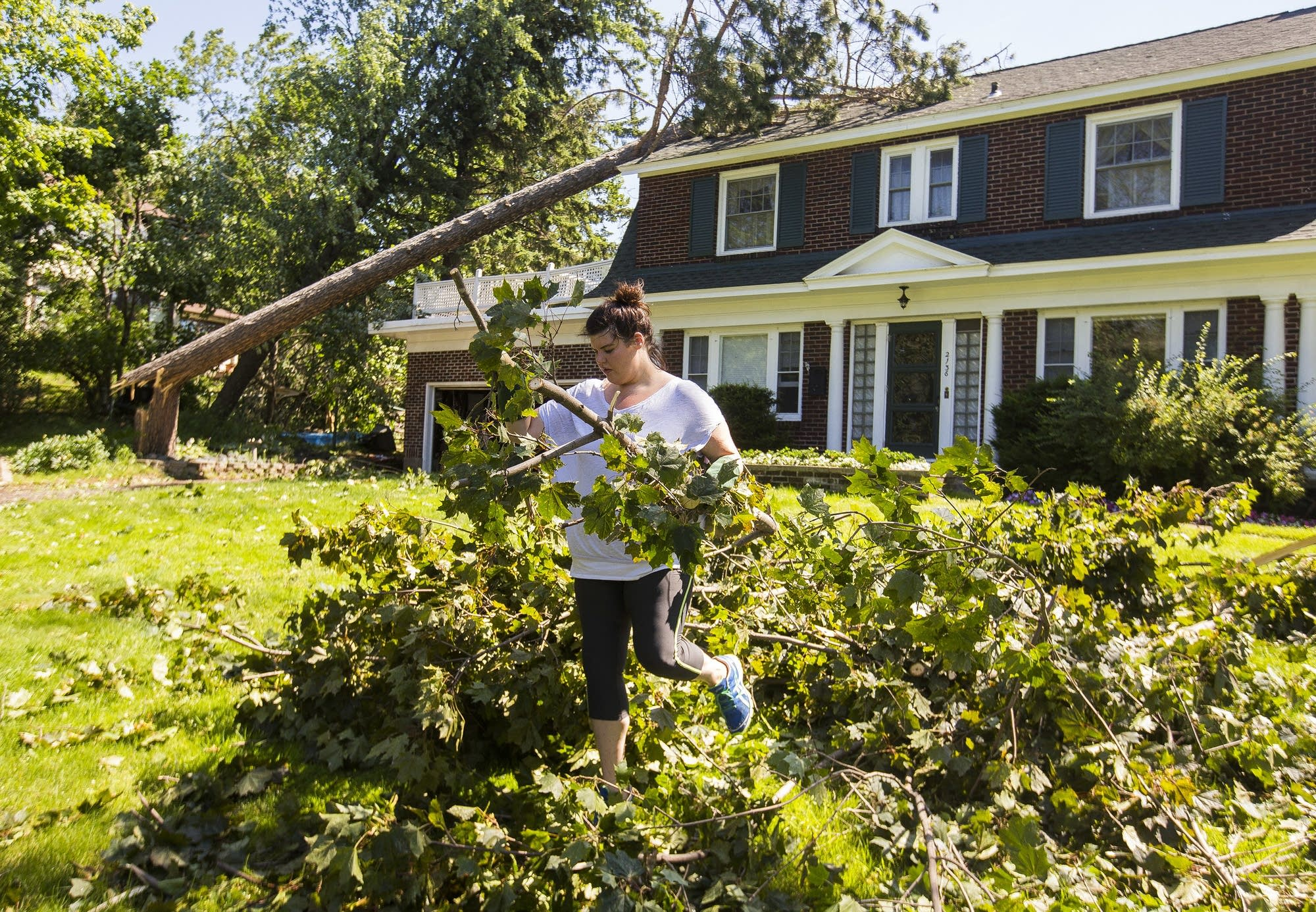 Annalise Peterson carries a downed branch