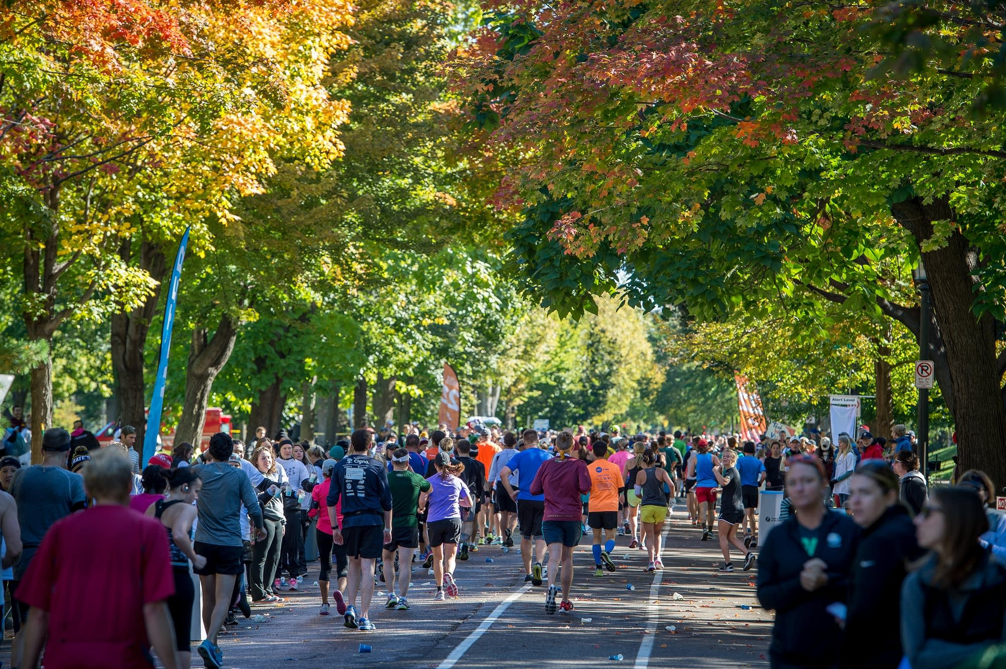 Runners pass under the tree canopy along Summit.