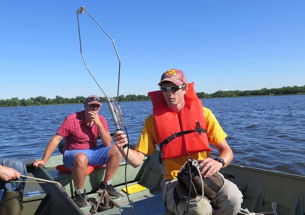Tracking adult carp with a radio antenna