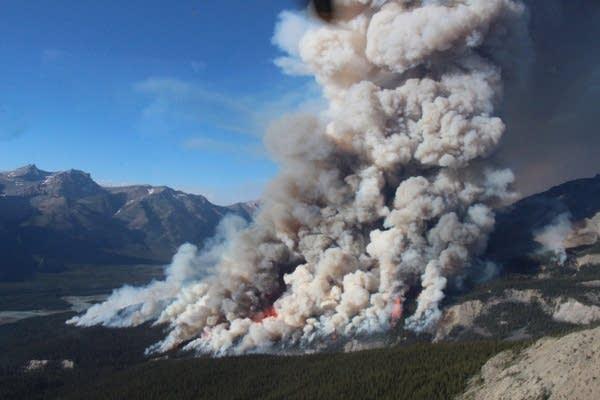 Copywrite Parks Canada_Spreading Creek Wildfire Burnout Ope.JPG