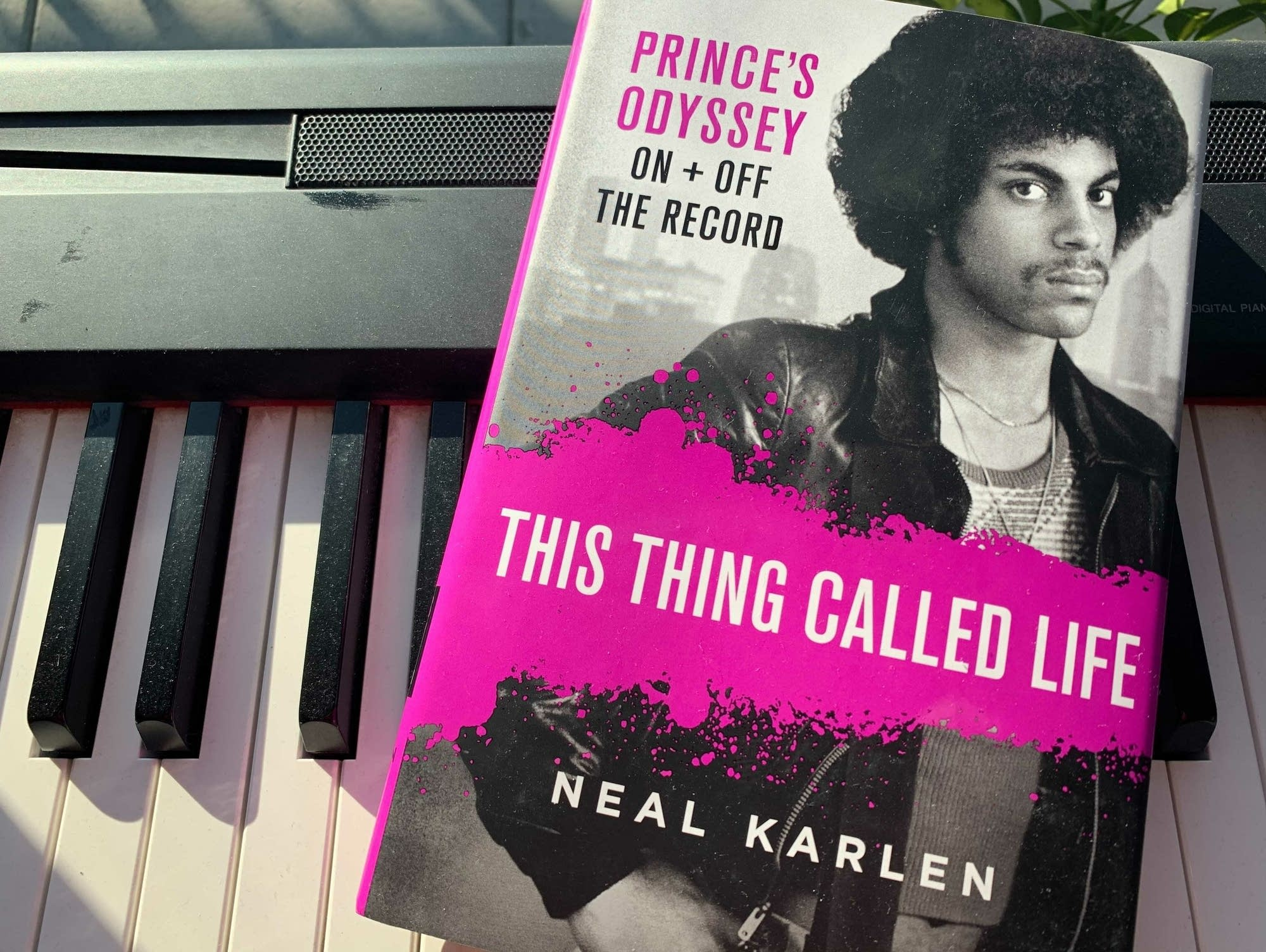 Neal Karlen's 'This Thing Called Life.'