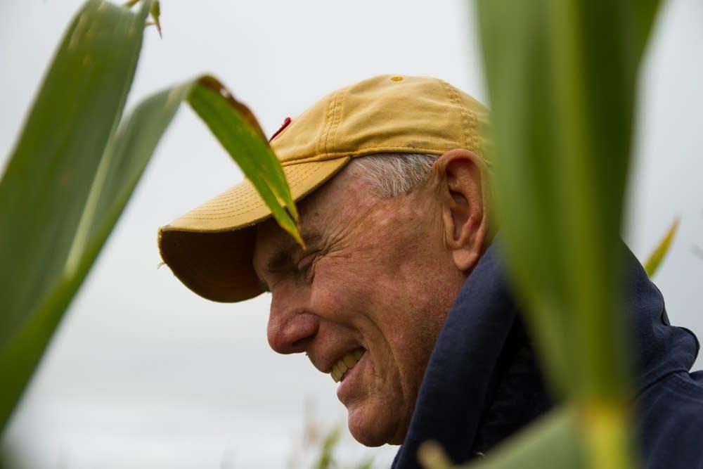 Dave Legvold grows corn near Northfield.