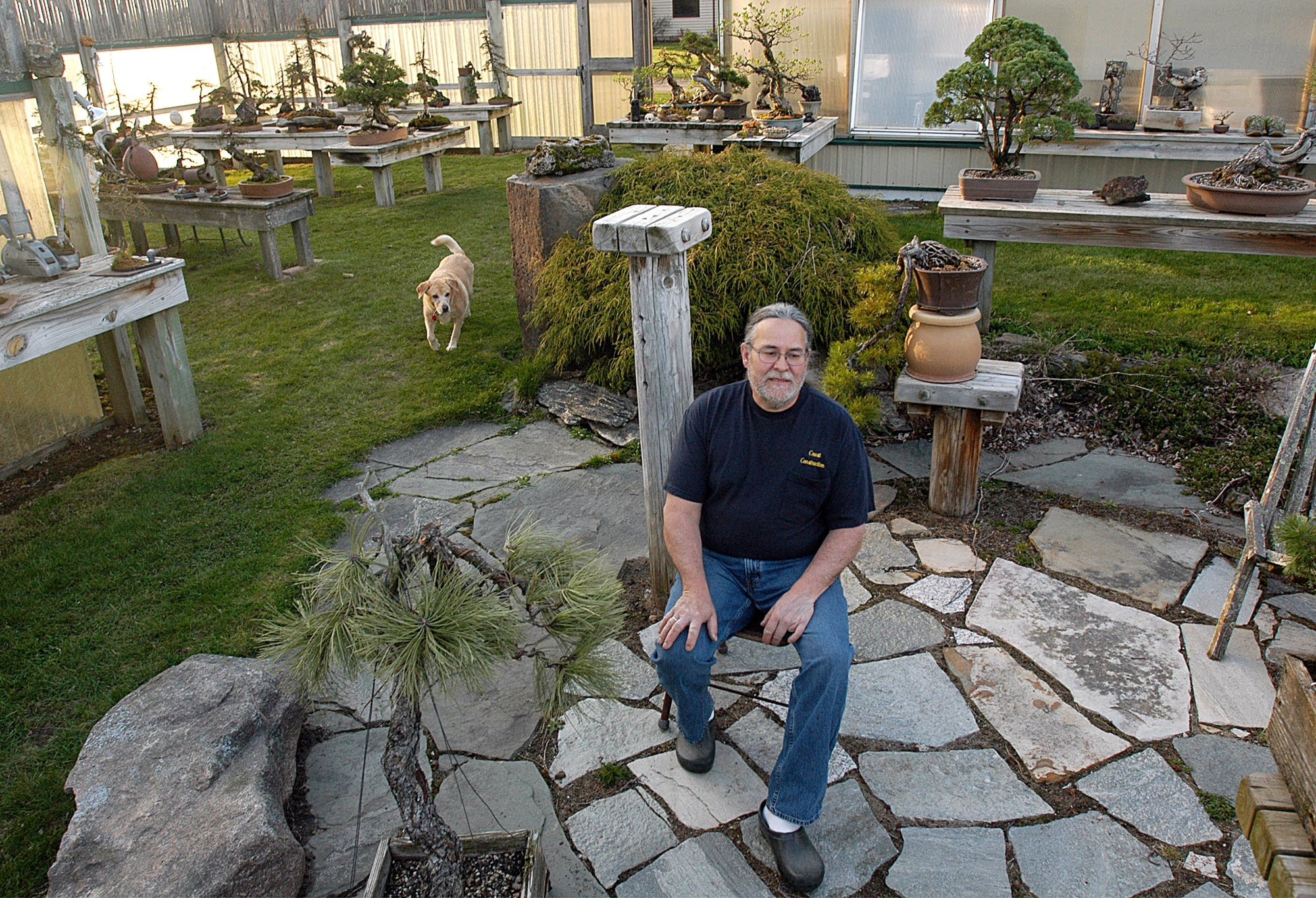 David Crust sits among the bonsai he has been creating for over 20 years.